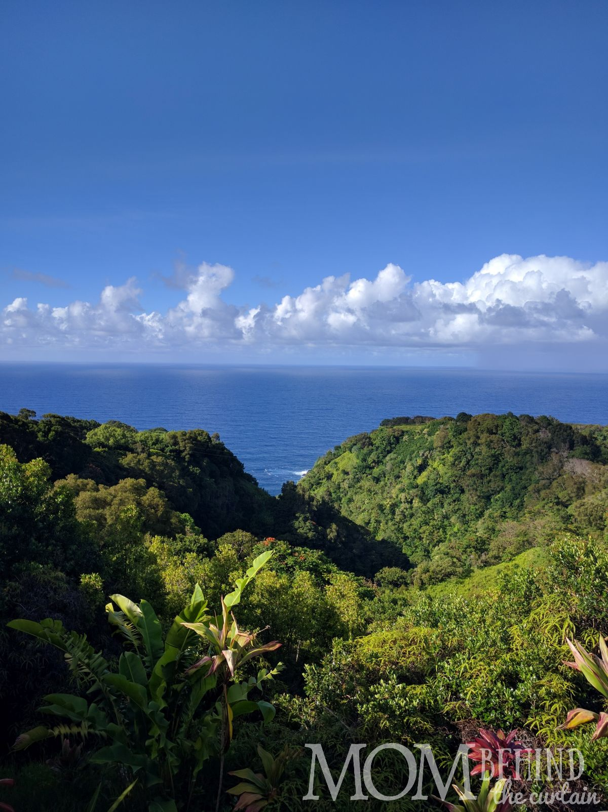 Maui's Garden of Eden Jurassic Park views.