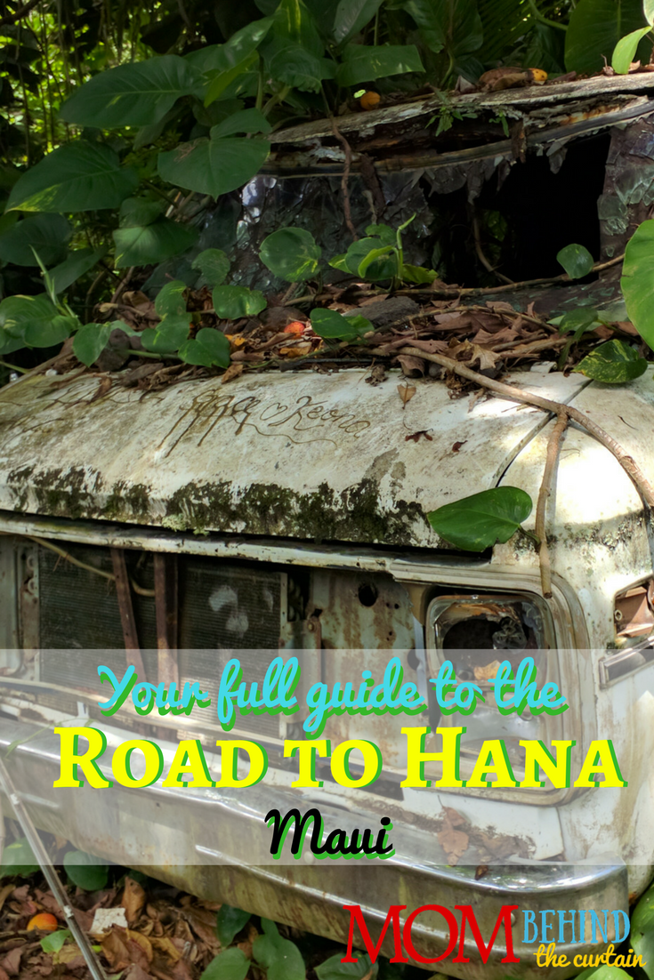 Road to Hana - where to stop and tips for your road trip through the rain forests on Maui.