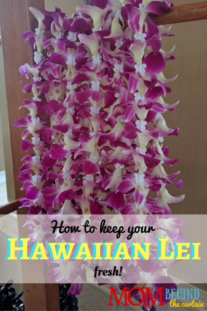 Maui vacation tips - here's how to keep your Hawaiian flower lei fresh! Aloha!