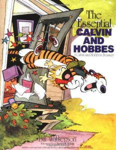 Best books for boys CalvinHobbes