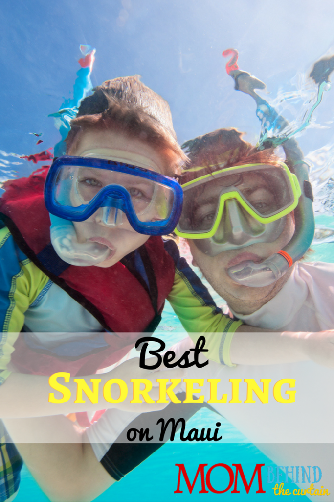 How to find the best snorkeling in Maui on your family vacation.