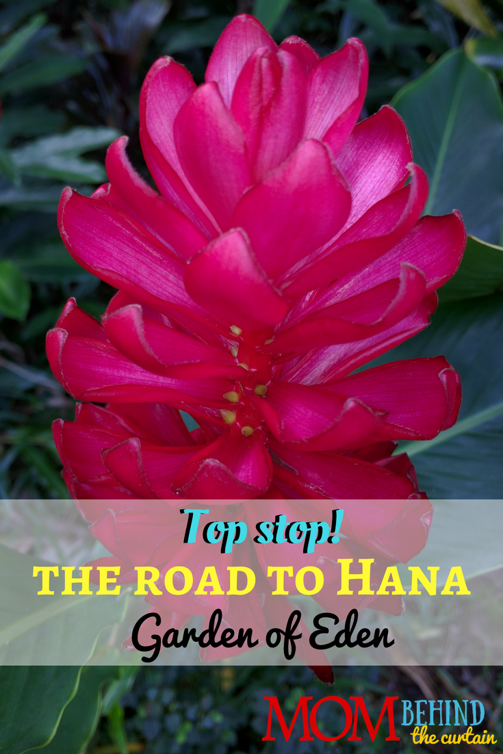 The Garden of Eden on Maui with breathtaking ocean views and beautiful flowers is a top stop on the Road to Hana! Check out this Maui road trip!