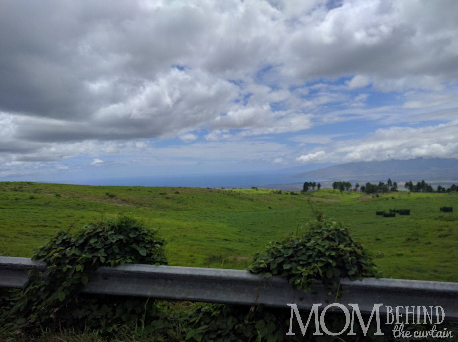 Scenery along Haleakala Summit drive, Maui, green rolling hills and distant ocean.