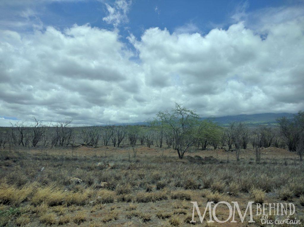 South Maui natural lanscape