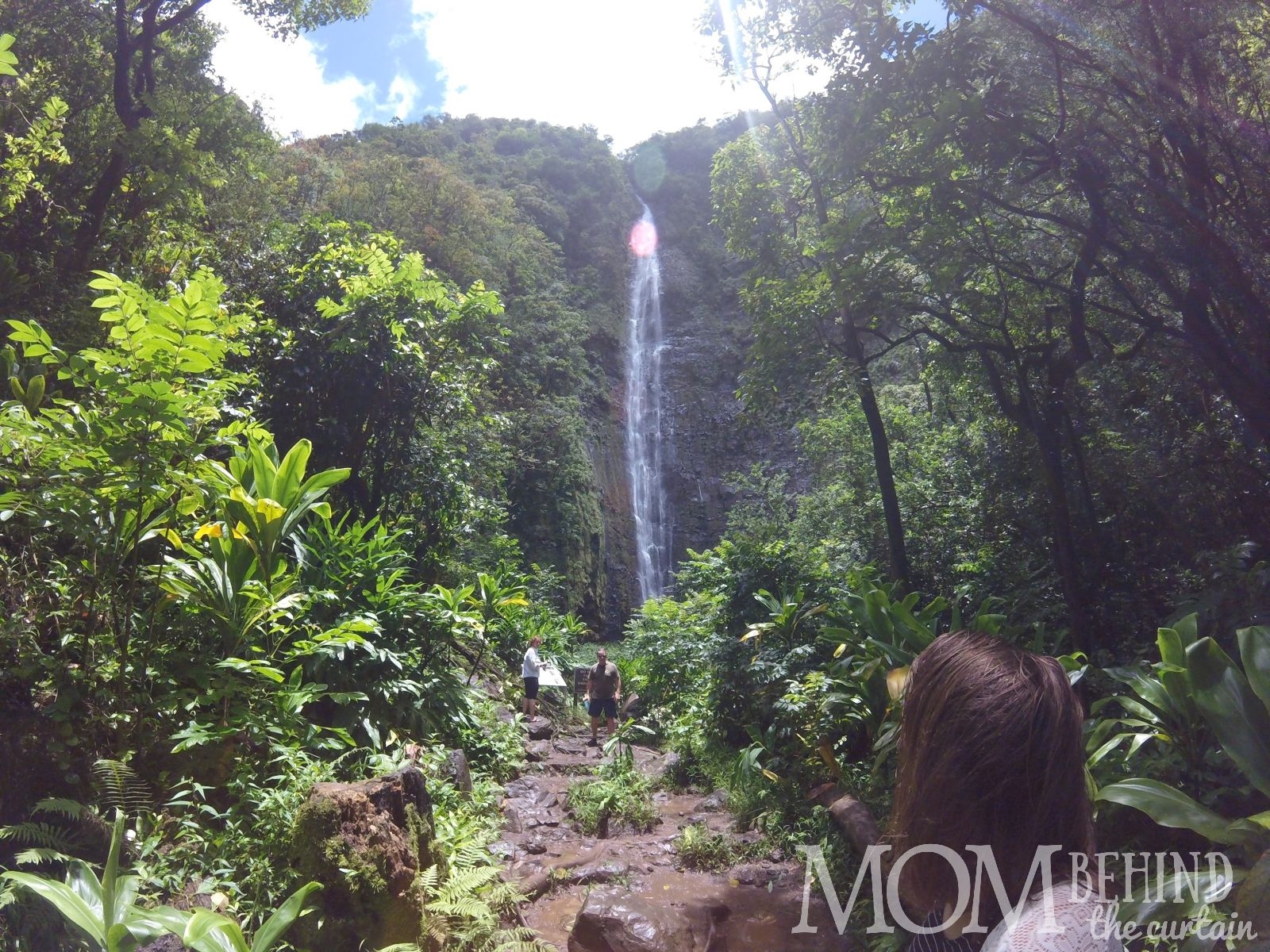 Waimoku Falls on the Pipiwai trail after the Bamboo Forest